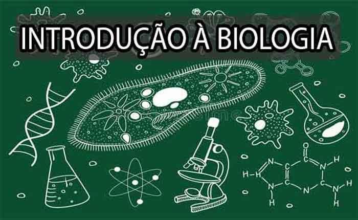 Foto de Introdução à Biologia Geral