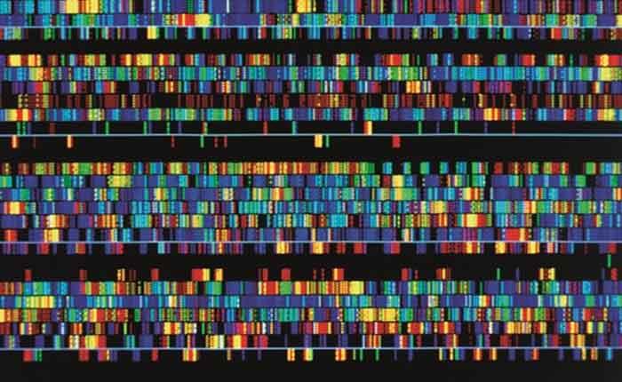 Foto de Genômica: o que é, pra que serve, utilização