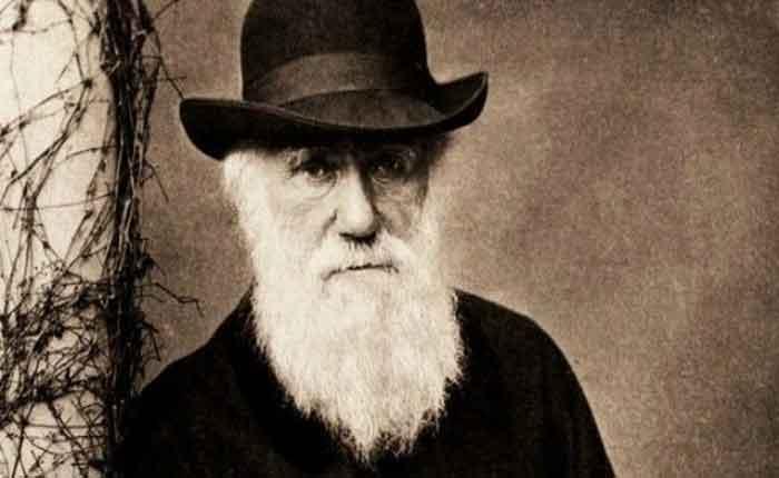 Foto de Teoria da Evolução de Charles Darwin